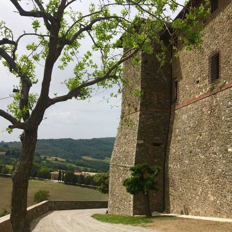 Biondi Santi Strikes Vineyard Gold Far South Of Montalcino
