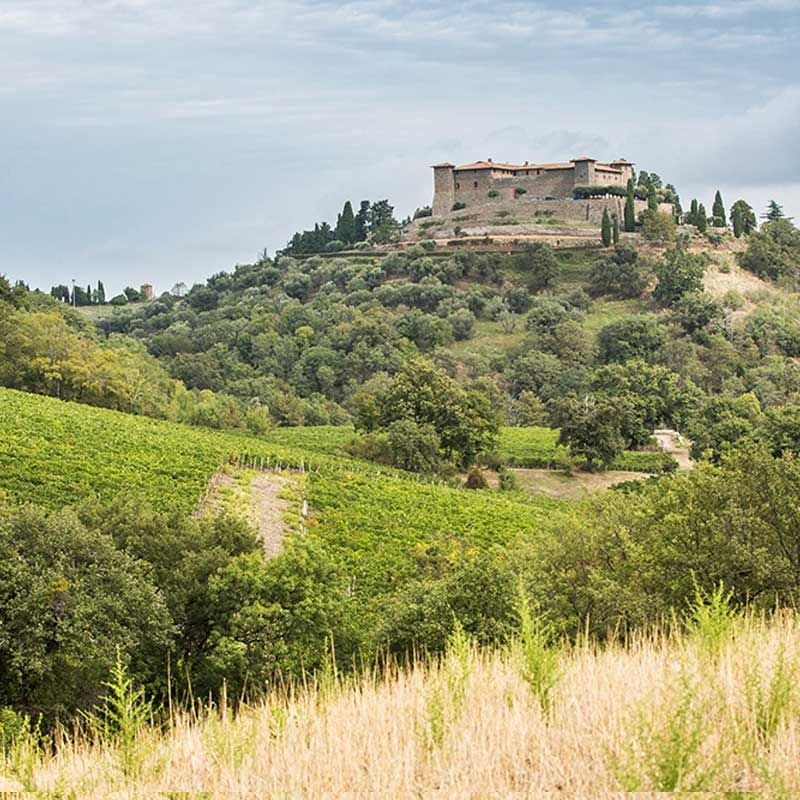 A Tuscan Wine Dynasty Forges A New Path